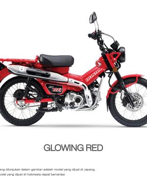 Motor Honda CT 125